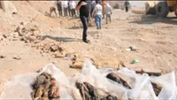 Mass grave found in northern Iraq