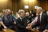 Paralympian Oscar Pistorius holds the hands of his uncle Arnold as he is taken down to the holding cells after being sentenced to five years imprisonment for the culpable homicide killing of his girlfriend Reeva Steenkamp at the high court in Pretoria, on