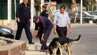 Ten wounded in blast outside Cairo University