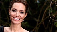 Are politics in Angelina Jolie's future?