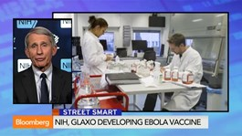 Ebola vaccine trial will take several months: Fauci