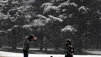Travel warnings as Belgium's first snow set to turn to ice