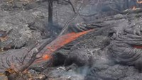 Lava flow breaks out in Hawaiian forest