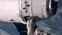 SpaceX cargo capsule reaches International Space Station