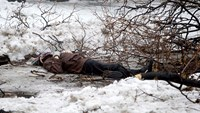 Casualties mount as fighting for Donetsk airport intensifies