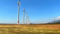 Cheap wind power? Just listen to turbines talk to each other, say researchers