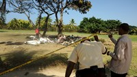 Seven people killed in Dominican Republic plane crash