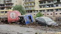 Tbilisi floods kill 9 people, zoo animals escape