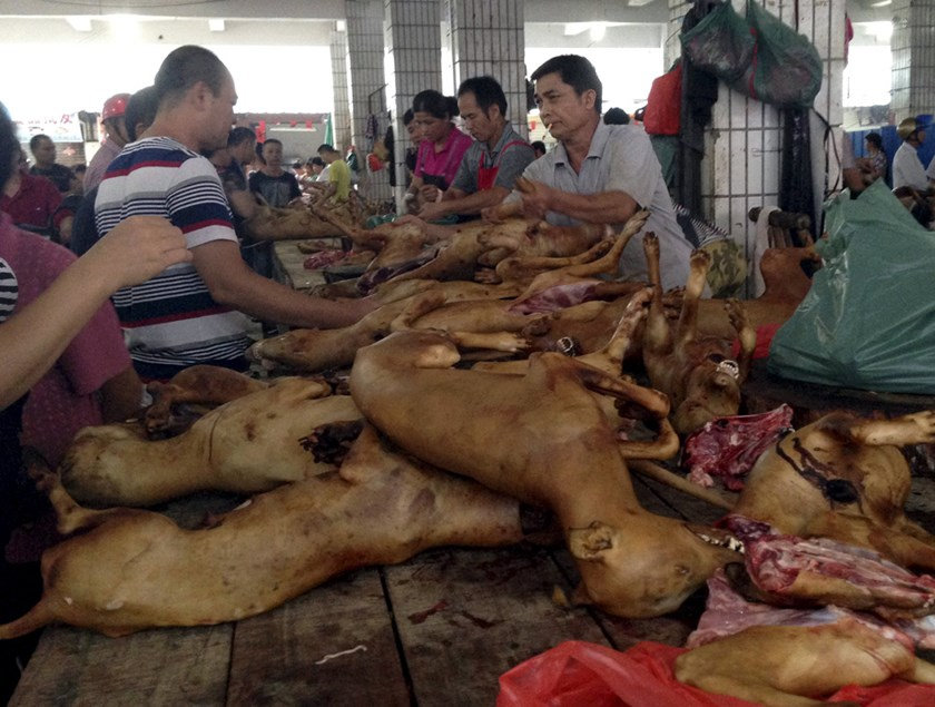 Vendors sell dog meat at a dog meat market on the day of local dog meat festival in Yulin, Guangxi Autonomous Region, June 22, 2015. REUTERS/Kim Kyung-Hoon