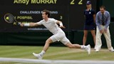 Wimbledon by the numbers: Who are the big winners?