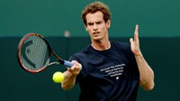 Murray and Gasquet prepared for Davis Cup quarter-final