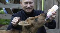 Putin the animal lover
