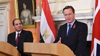 Cameron, Sisi say working closely on Egypt crash