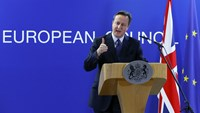 Cameron says sees 'pathway' to EU reform deal
