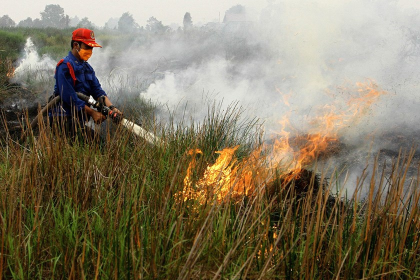 A firefighter puts out a fire in South Sumatra, Indonesia in October. Photo: Abdul Qodir/AFP/Getty Images
