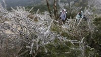 China, Hong Kong shivering from cold spell