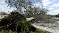 One dead in Southern California storms