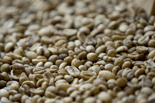 Robusta coffee beans sit in a container inside a coffee store in Hanoi. Photo: Bloomberg/Brent Lewin