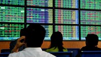 Vietnam stocks seen reaching 2008 high by year-end on economy