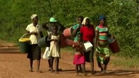 Zimbabwe drought pushes up to 4 million towards hunger
