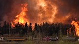 Entire city evacuated as Alberta fire burns out of control
