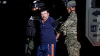 Mexican drug kingpin has not filed extradition challenge: FM