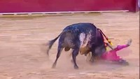 Matador killed in Spain bullfight