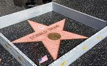 Artist erects wall around Trump's Walk of Fame star