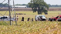 Tighter oversight of balloon operators urged after Texas crash