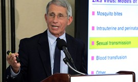 Fauci: $33 million needed now for Zika vaccine research