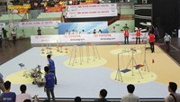 Vietnam champion named for int'l robot contest
