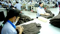 Vietnamese labor productivity lags behind ASEAN neighbors: report
