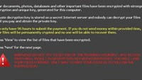 Internet users warned of new strain of ransomware that strikes thousands in Vietnam