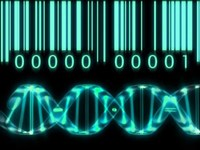 Mission accomplished: Researchers successfully sequence Vietnamese human genome