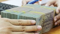 Vietnam's 2014 budget revenue, spending both exceeded estimates: report