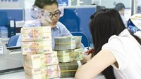 Vietnam's central bank pledges to bring bad debt ratio to 3 pct