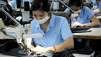 Vietnam, EU finish negotiations on free trade agreement: report