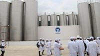 Government to sell shares in Vietnam's dairy giant Vinamilk: report