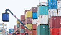 Government mulls oversight of shipping fees on rip-off by foreign freight firms
