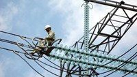 Electricity of Vietnam promises no price hikes through year end