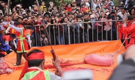 Vietnam again asked to end pig slaughter ritual
