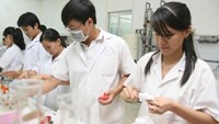 Vietnam mulls $40 mln plan of sci-tech personnel training