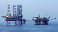 PetroVietnam mulls closing oil fields as crude plummets