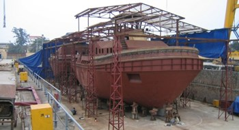 Netherlands' Damen eyes Vietnamese shipbuilder: report