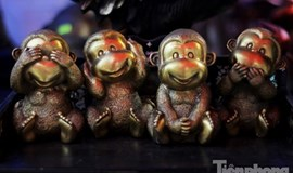 Cute monkeys are in this Lunar New Year holiday season