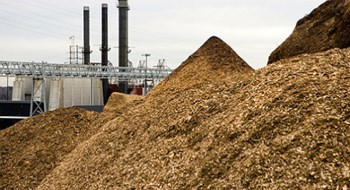 South Korea's Dohwa plans $400 mln biomass power plant in Vietnam