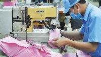 New companies, shutdowns both rise at fast pace in Vietnam: data