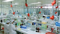 Japan's Taisho buys into Vietnam's pharma in $97 mln deal