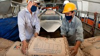 Vietnam government to sell stake in cement giant: report