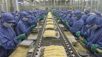 Vietnam may see little gains from Russian FTA